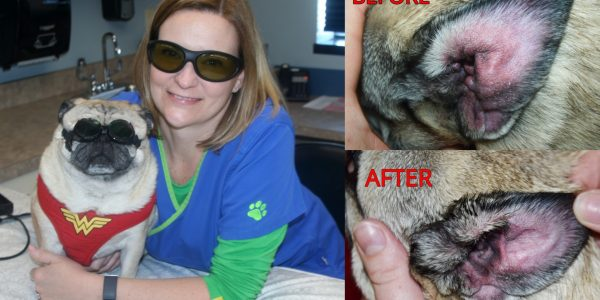 Laser Therapy Before & After Photo