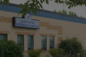 Glove Cities Veterinary Hospital